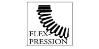 FLEX-PRESSION LTD.